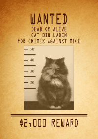 Mobilefish.com - Wanted poster generator
